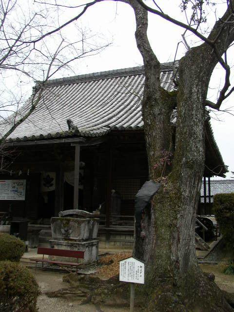 奈良県橘寺