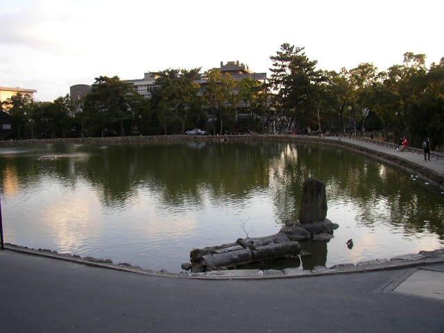 奈良県奈良公園