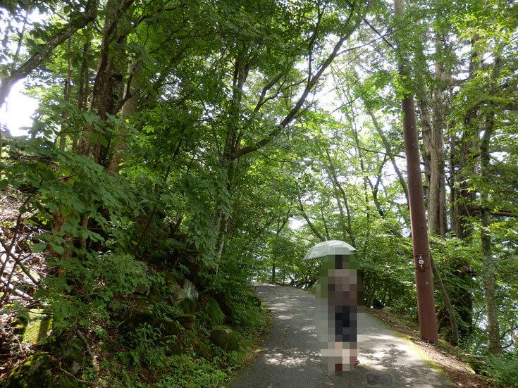 栃木県日光市日光自然博物館