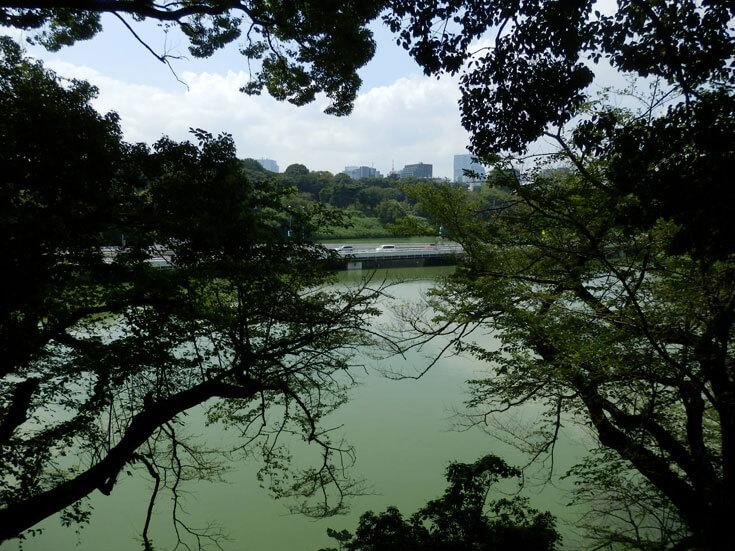 東京都千代田区北の丸公園千鳥ヶ淵
