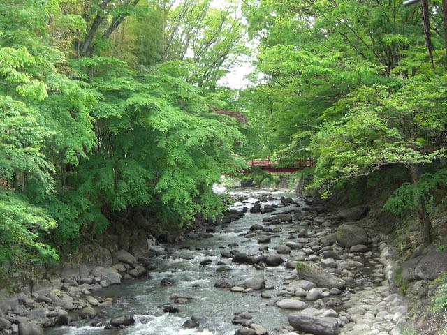 静岡県伊豆下田旅行修善寺