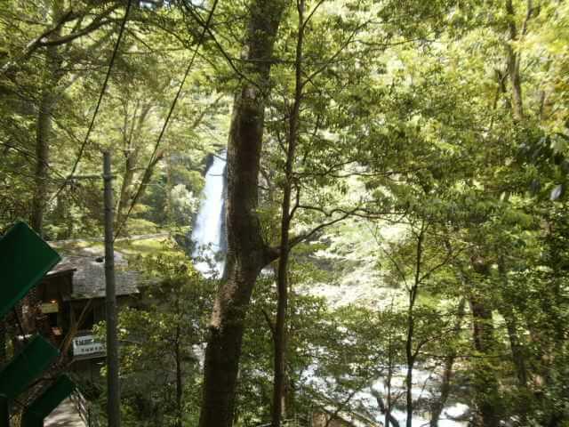 静岡県伊豆下田旅行浄蓮の滝