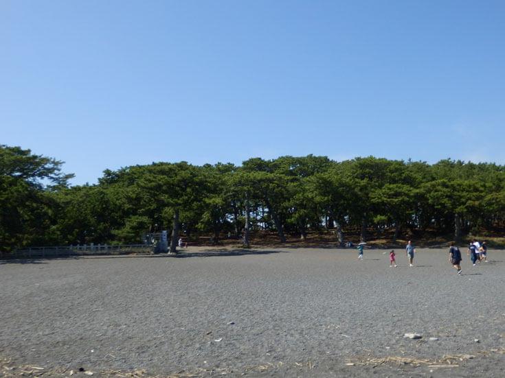 静岡県静岡市の旅行観光三保の松原