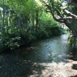 【ウォーターサーバーを無料レンタル】日本の大自然が育んだ100%の天然水をご家庭で!